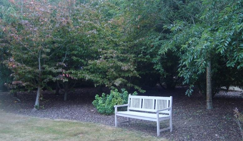 Entretien de votre jardin quimper et pont l 39 abb finist re for Entretien jardin finistere