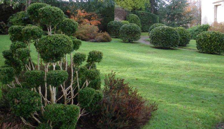 entretien de votre jardin quimper et pont l 39 abb finist re