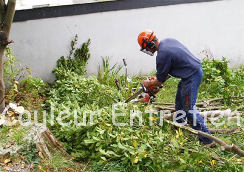 Emejing image d entretien de jardin photos awesome for Annonce entretien jardin
